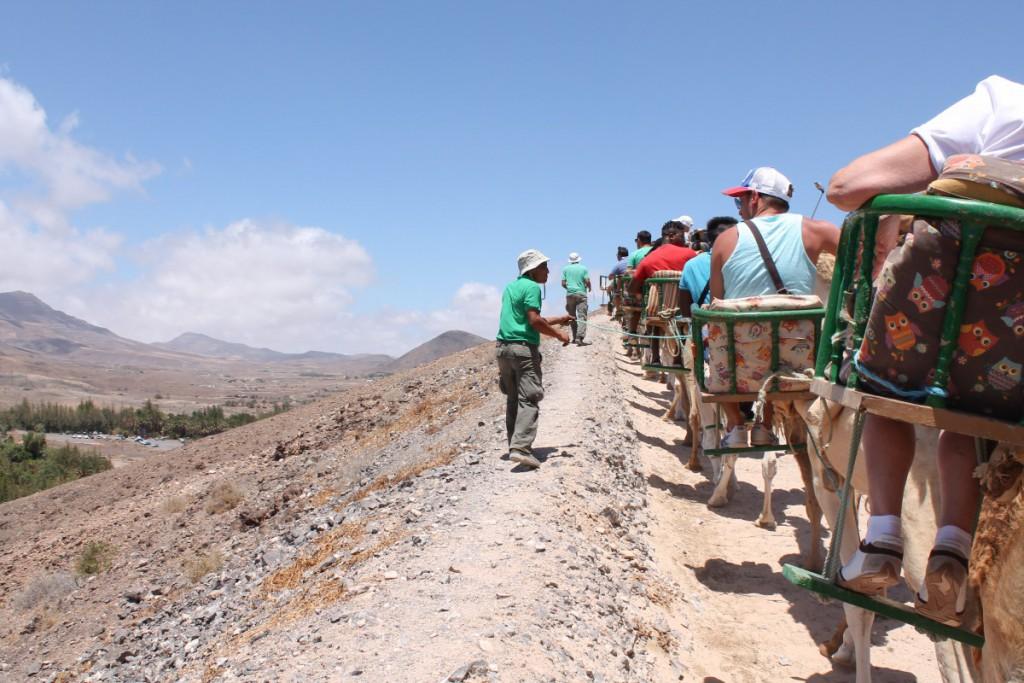 (Fuerteventura) - 6 - Fuerteventura travel diary