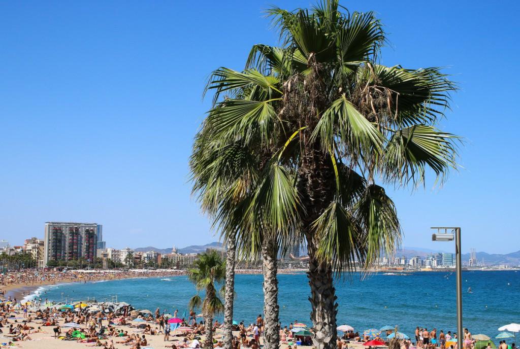 Barcelona Travel Diary - 40