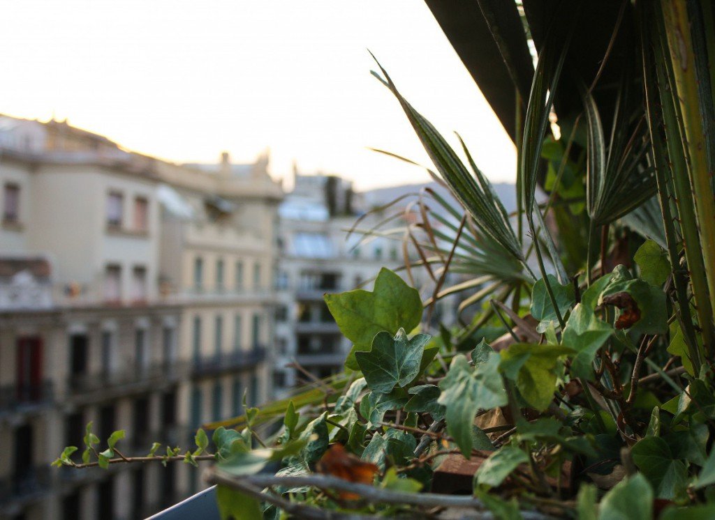 Barcelona Travel Diary - 6_bearbeitet-1